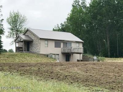 Osceola County Single Family Home For Sale: 4039 14 Mile Road
