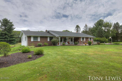 Middleville Single Family Home For Sale: 10420 Riverdale Drive SE