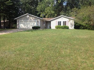 Kalamazoo Single Family Home For Sale: 614 Silva Street