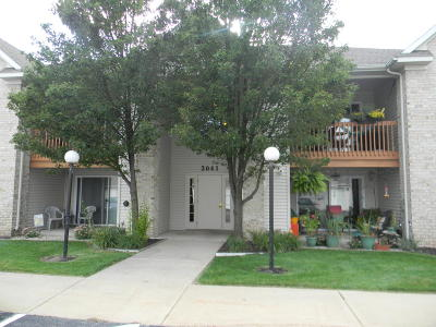 Holland, West Olive Condo/Townhouse For Sale: 3041 E Crystal Waters Dr #7