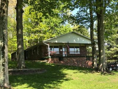 Kalamazoo County Single Family Home For Sale: 1752 N 33rd Street