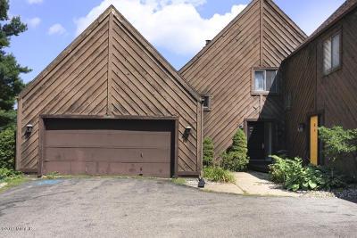 Plainwell Single Family Home For Sale: 278 Fairway Court