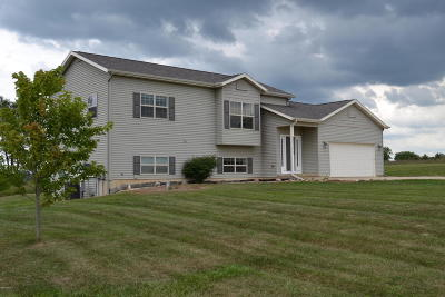 Mecosta County Single Family Home For Sale: 18244 Hunters Ridge Drive