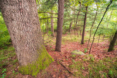Greenville Residential Lots & Land For Sale: Bracey Avenue