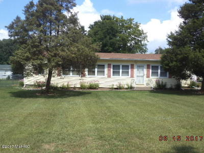 Van Buren County Single Family Home For Sale: 42658 82nd Avenue