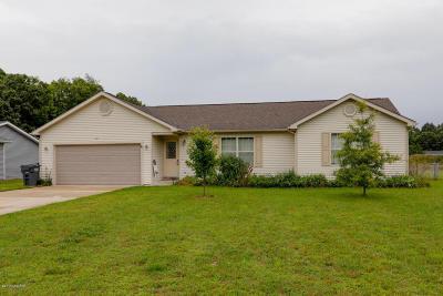 Plainwell Single Family Home For Sale: 293 Zak Road