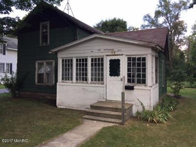 Single Family Home For Sale: 109 Michigan Avenue