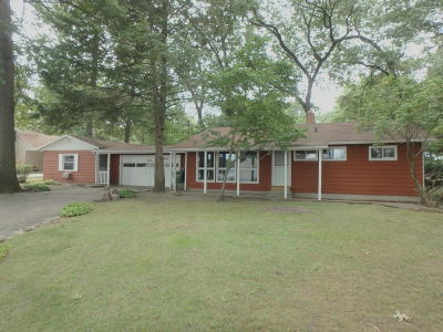 Edwardsburg Single Family Home For Sale: 23231 S S Shore Drive