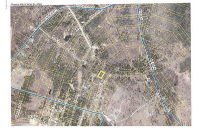 Manistee County Residential Lots & Land For Sale: Ferndale #Lots 4,