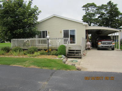 Manistee County Single Family Home For Sale: 3334 Mariners