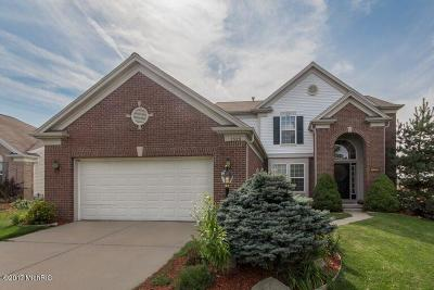 Caledonia Single Family Home For Sale: 7329 Misty View Court SE
