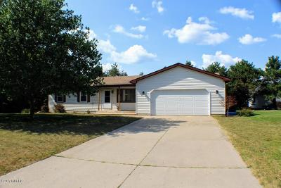 Middleville Single Family Home For Sale: 2110 Brooks Street