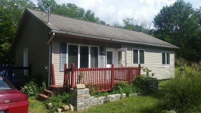 Van Buren County Single Family Home For Sale: 37591 Cr 215