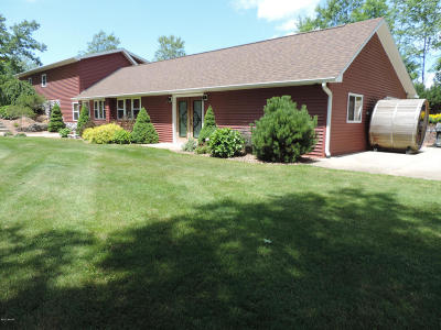 Newaygo County Single Family Home For Sale: 1728 E 1 Mile Road