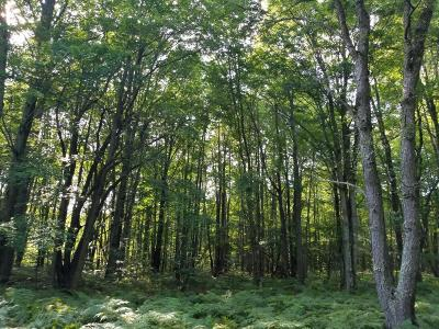 Scottville Residential Lots & Land For Sale: Dewey Road
