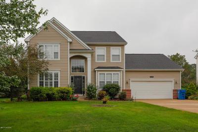 Kalamazoo Single Family Home For Sale: 7650 Haflinger Circle