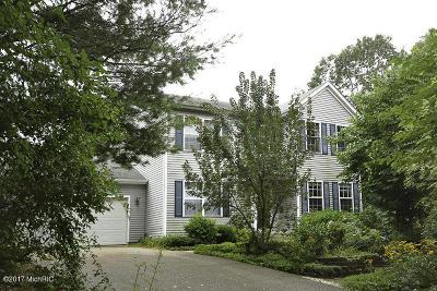 Kalamazoo Single Family Home For Sale: 4170 Granite Avenue