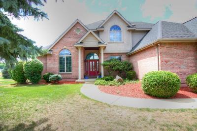 Kalamazoo County Single Family Home For Sale: 8805 Pine Island Court N