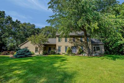 Caledonia Single Family Home For Sale: 7911 Lone Oak Court SE