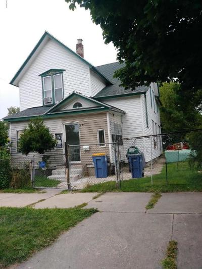 Grand Rapids Single Family Home For Sale: 249 Powell Street SE