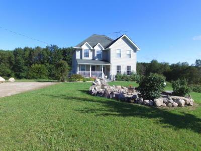 Osceola County Single Family Home For Sale: 9890 9 Mile Road