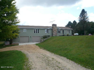 Newaygo County Single Family Home For Sale: 7598 17 Mile Road