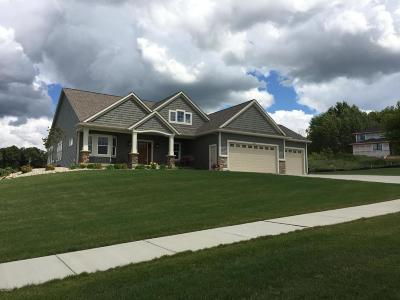 Hudsonville Single Family Home For Sale: 2992 Rocaway Drive