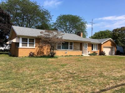 Bridgman Single Family Home For Sale: 3783 Lake Street