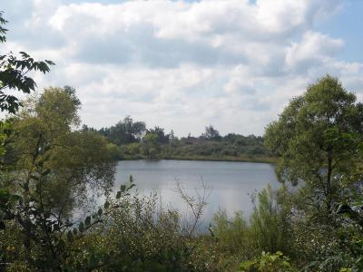 Osceola County Residential Lots & Land For Sale: 9837 70th Avenue