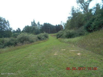 Scottville Residential Lots & Land For Sale: 1673 W First Street