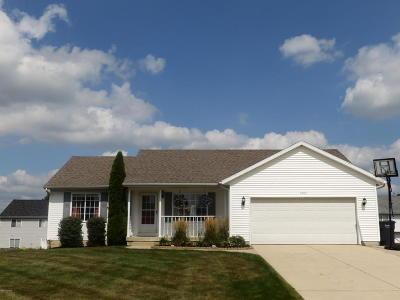 Hudsonville Single Family Home For Sale: 3705 Lenters