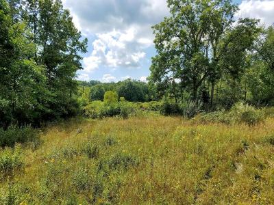 Hastings Residential Lots & Land For Sale: 893 Tanner Lake Road