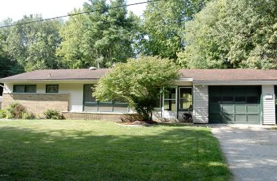 Comstock Park Single Family Home For Sale: 1362 Buth Drive NE
