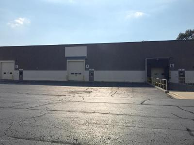 Bridgman Commercial For Sale: 9892 Red Arrow Highway #Bldg B