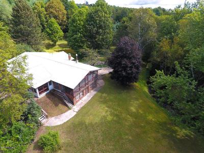Kaleva Single Family Home For Sale: 13111 Johnson Road