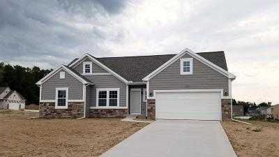 Byron Center Single Family Home For Sale: 658 Painted Rock Drive