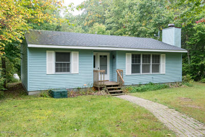 South Haven Single Family Home For Sale: 1128 Golfmere Avenue