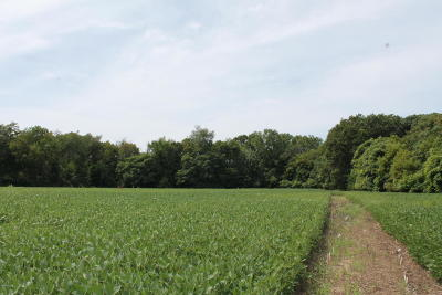 Niles Residential Lots & Land For Sale: N 5th Street