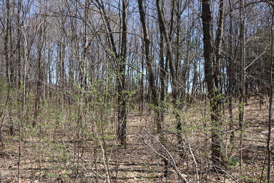 Benton Harbor Residential Lots & Land For Sale: Vl Pitcher Drive
