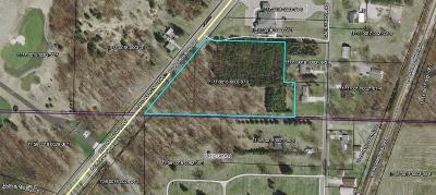 Bridgman Residential Lots & Land For Sale: V/L Red Arrow Highway