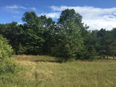 Residential Lots & Land For Sale: Lot 66 Red Apple Road