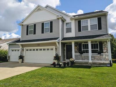 Kalamazoo Single Family Home For Sale: 7341 Brindle Trail