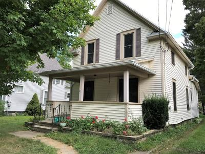 Allegan Single Family Home For Sale: 643 Ely Street