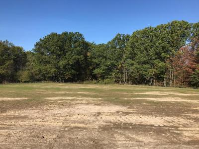 Grandville Residential Lots & Land For Sale: Lot 41 Stonebridge Drive