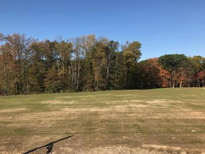 Grandville Residential Lots & Land For Sale: Lot 48 Stonebridge Drive