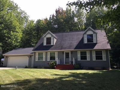 Ludington Single Family Home For Sale: 6515 Duneview Drive