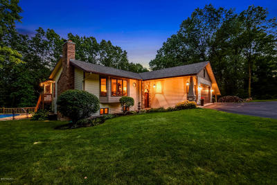 Grand Rapids Single Family Home For Sale: 4670 Shear Wood Court NE