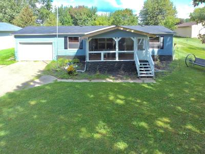 Allegan Single Family Home For Sale: 4241 Lakeview Drive