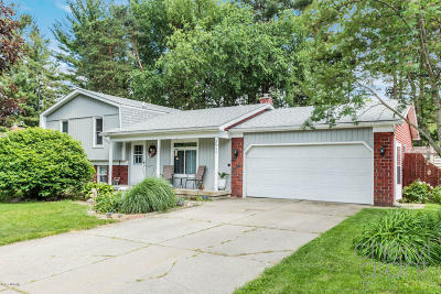 Grand Rapids Single Family Home For Sale: 2942 Appleleaf Drive NE