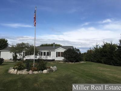 Lake Odessa MI Single Family Home For Sale: $245,000
